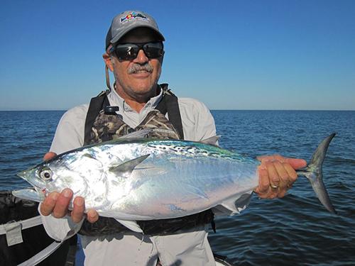 Capt.-Rick-Grassetts-Sarasota-FL-Fly-Fishing-Forecast-November-2018-JimCollinsSnookMinnowflyalbie