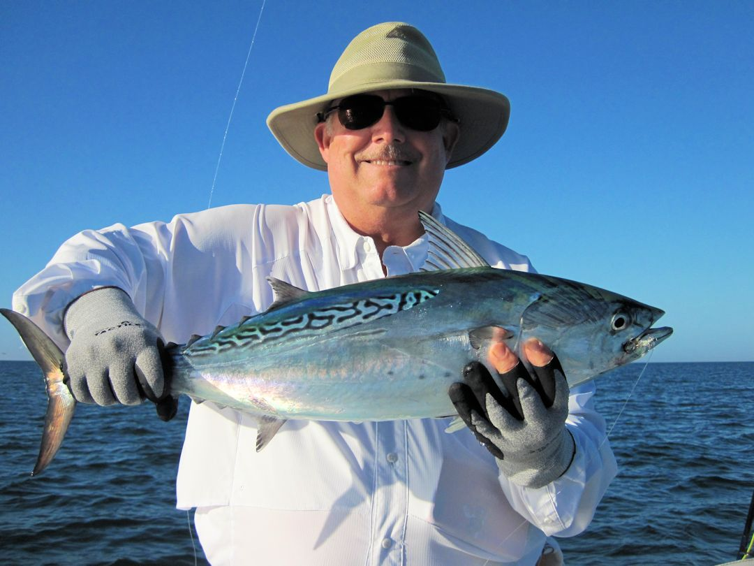 December is usually a good month to fly fish the coastal gulf. Lynn Skipper, from Apollo Beach, FL, had good action catching and releasing false albacore (little tunny) and tripletail on flies while fishing with Capt. Rick Grassett in a previous December.