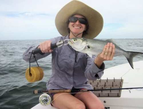 Capt. Rick Grassett's Sarasota FL Fly Fishing Forecast for January 2019