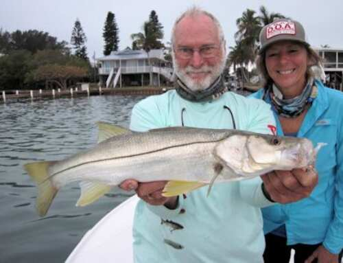Capt. Rick Grassett's Sarasota FL Fly Fishing Forecast for April 2019