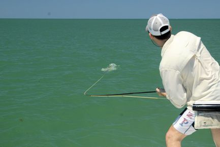 Capt. Rick Grassett's Sarasota FL Fly Fishing Forecast for May 2019